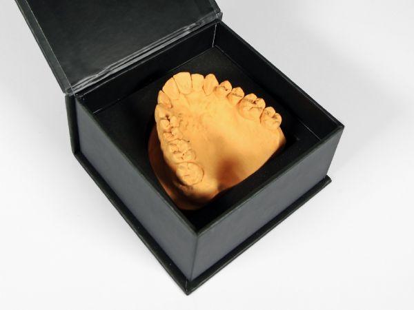 Klappschachtel in Schwarz mit festem Inlay für Zahnmodell