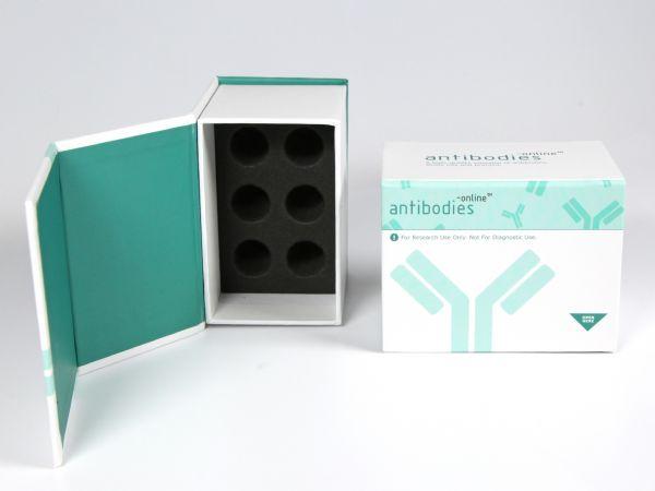 Tiefe Box mit Klappdeckel für Fläschchen als Produktmuster. Pharmaverpackung mit Aufdruck und Innenraum in Firmenfarbe